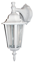 Whitfield OWL2041-WH - 1 Light Outdoor Light